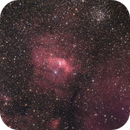 NGC 7635 - The Bubble Nebula,                                Niels Wilkening