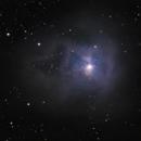 NGC 7023 der Irisnebel,                                Peter Schmitz