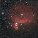 The Horse Head Nebula,                                Martin Lysomirski