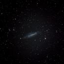 NGC 4236,                                Robin Clark - EAA imager