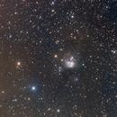 NGC 7129,                                Jim Morse
