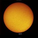 Sol 7-5-2020 Ha & Cak,                                Steve Ibbotson