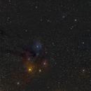 The Scorpion's Head,                                OrionRider
