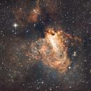 The Swan Nebula,                                Vencislav Krumov