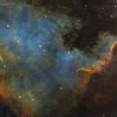 NGC 7000,                                Kyle Pickett