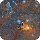 Rho Ophichi Cloud Complex,                                Jose Mtanous