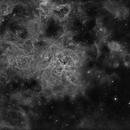 Tarantula Nebula,                                Brett du Preez