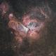 Eta Carinae Nebula - H-HSO,                                Newton Cesar Flor...
