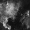 NGC 7000,                                Edoardo Perenich