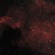 NGC 7000 North America Nebula,                                PeteS_MA