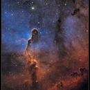 IC 1396 Elephant's Trunk Nebula (Narrowband),                                Mike Oates