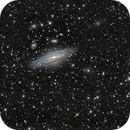 NGC 7331,                                Dan Wilson