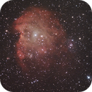NGC 2174 (Cropped),                                Alex Che