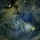 Cone Nebula,                                Pablo Gazmuri