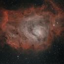 Lagoon Nebula (M8),                                David Wright
