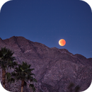 Super Blue Eclipsed Moon,                                Tom Robbe