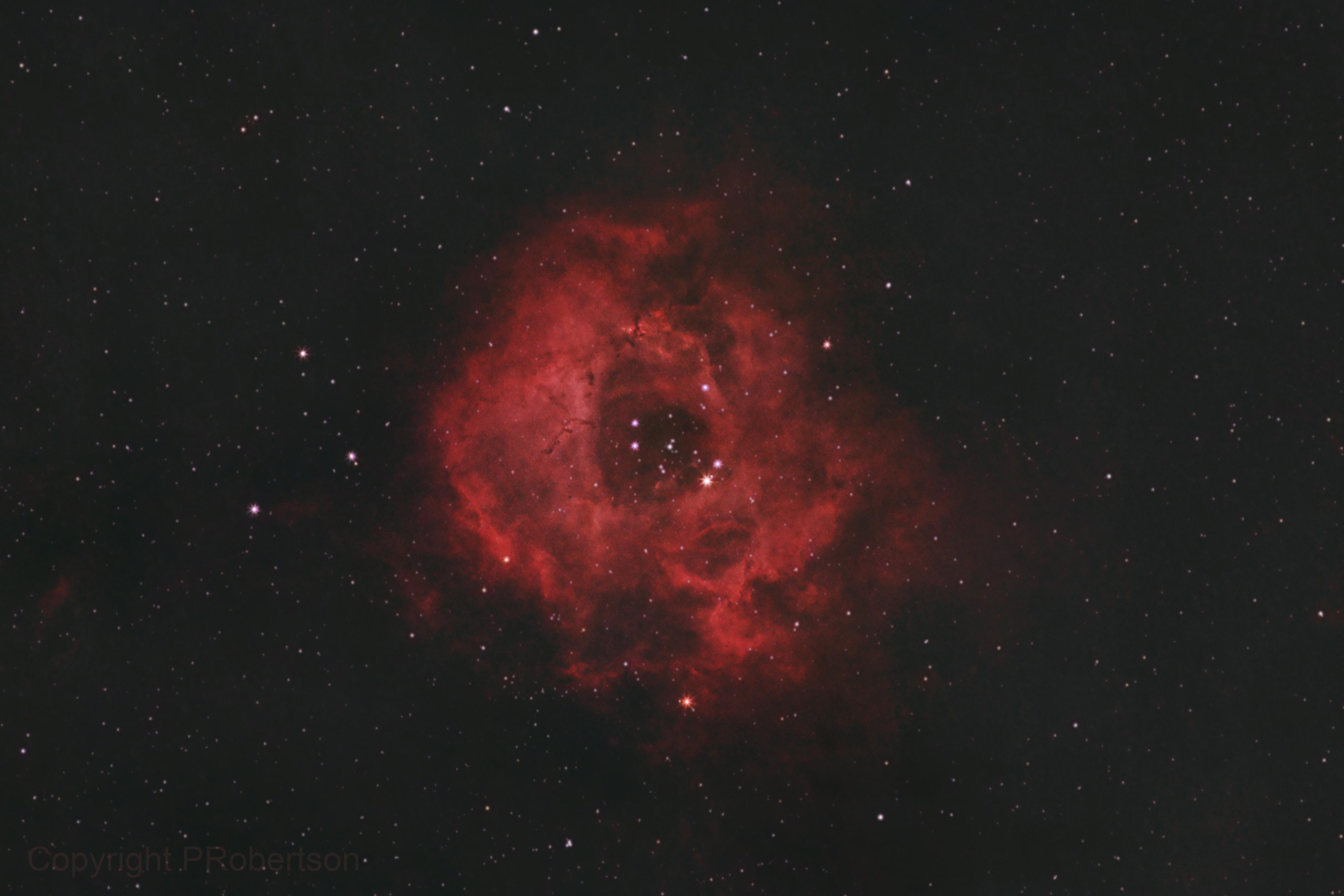 Rosette Nebula,                                Peter64