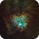 NGC1491 Fossil Footprint - SHO,                                Nik Coli