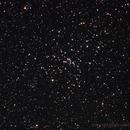 M48 Open Cluster in Hydra,                                Gustavo Sánchez