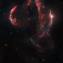 The Cygnus Loop - Veil and Others,                                Matt Harbison