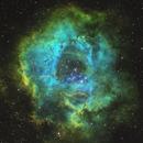 Rosette Nebula in Hubble Palette,                                Johannes Schiehsl