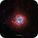 Nebulosa Rosetta,                                Stefano