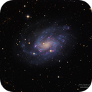 NGC300 Galaxy,                                Nicolas Adriano
