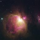 M42 - The Great Orion Nebula,                                Rick Breen