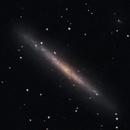 NGC 4244,                                Timothy Martin & Nic Patridge