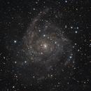 IC342 - The Hidden Spiral,                                Jason Guenzel