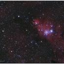 NGC2264 - El Cono,                                Jesús M. Vargas