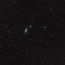 NGC 6503,                                H.Chris