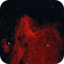 IC5070 Nebulosa Pellicano,                                Alessandro Curci