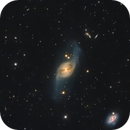 NGC3718 Spiral Galaxy in Ursa Major,                                Elmiko