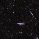 NGC 4631_4656_LRGB,                                ++SiMoN++