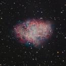 M1 The Crab Nebula,                                Shannon Calvert