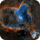 Heart & Fish Head Nebulae - Revisited,                                Michel Makhlouta