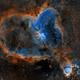 Heart & Fish Head Nebulae - Revisited,                                Michel Makhlouta