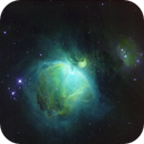 M42 SHO,                                Dave Bloomsness