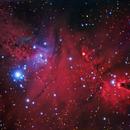 NGC 2264 Cone & Fox Fur Nebulae,                                PGU (Giuliano Pin...