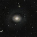 M94 Croc's Eye Galaxy,                                John Pungello