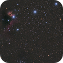 Orion with unmoded D500,                                Tim Lewandowsky