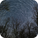 Star Trails with Trees,                                Kristopher Setnes