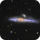 NGC 4631, the Whale galaxy,                                Salvatore Iovene