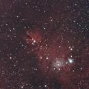 Cone Nebula,                                agostinognasso