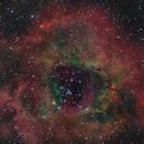The Rosette Nebula,                                Wheeljack