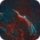 Western Veil Nebula HOO - Witch's Broom NGC-6960,                                Pam Whitfield