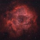 The Rosette Nebula,                                Yann-Eric BOYEAU