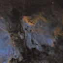 IC 5070 SHO, Pelican Nebel,                                mdohr