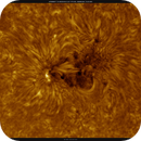 AR2827, HA, High Res, Colored, Inverted, 05-31-2021,                                Martin (Marty) Wise